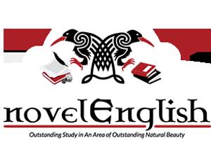 novelEnglish